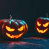 3er Halloween en la clínica veterinaria vetfaunia